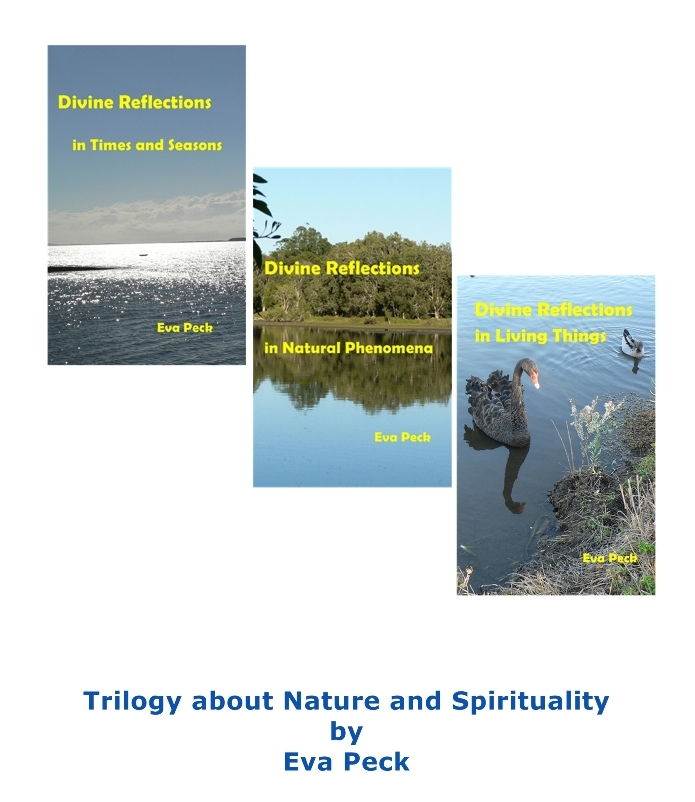 Divine Reflections Trilogy